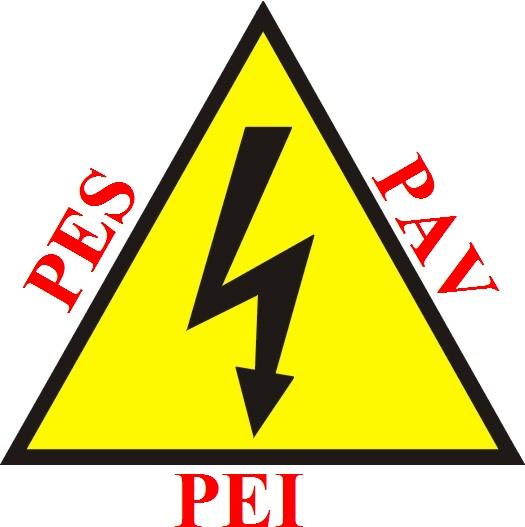 Formazione PES PAV